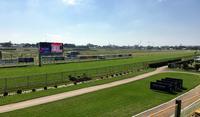 NJC Grandstand View