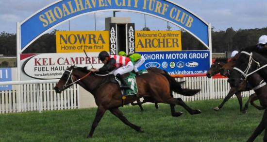 Chief In Command Wins Mollymook Cup!