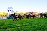 BRUNO SCORES A START IN THE GRAFTON CUP
