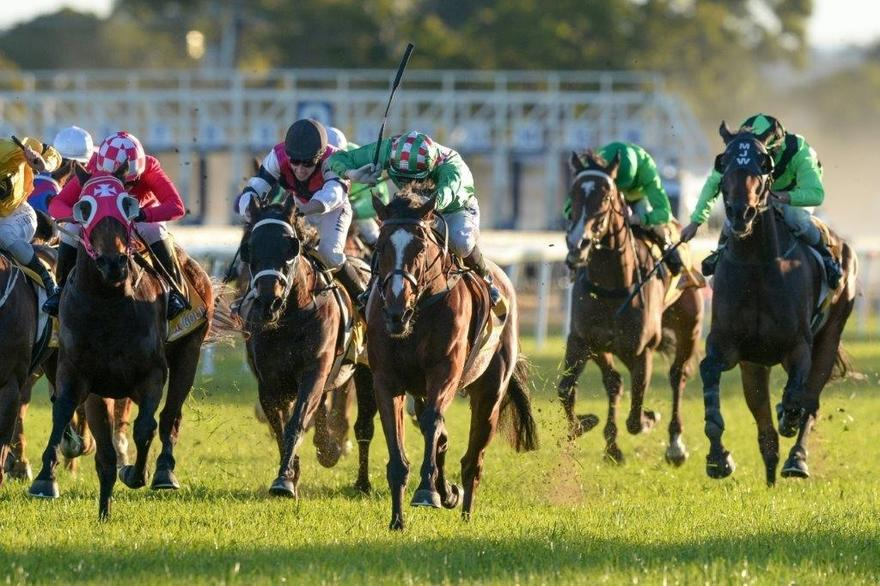 FIRST CRUSH LANDS EMOTIONAL WIN IN GRAFTON CUP