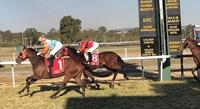 DODGE THE PRESS GOES ONE BETTER AT KILCOY