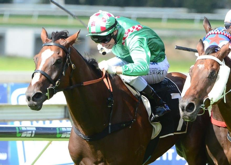 FIRST CRUSH PRIMED FOR IPSWICH CUP