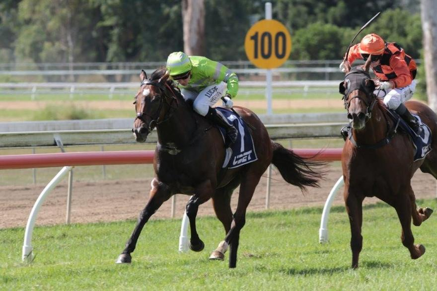FIVE RUNNERS TO LINE-UP AT BEAUDESERT