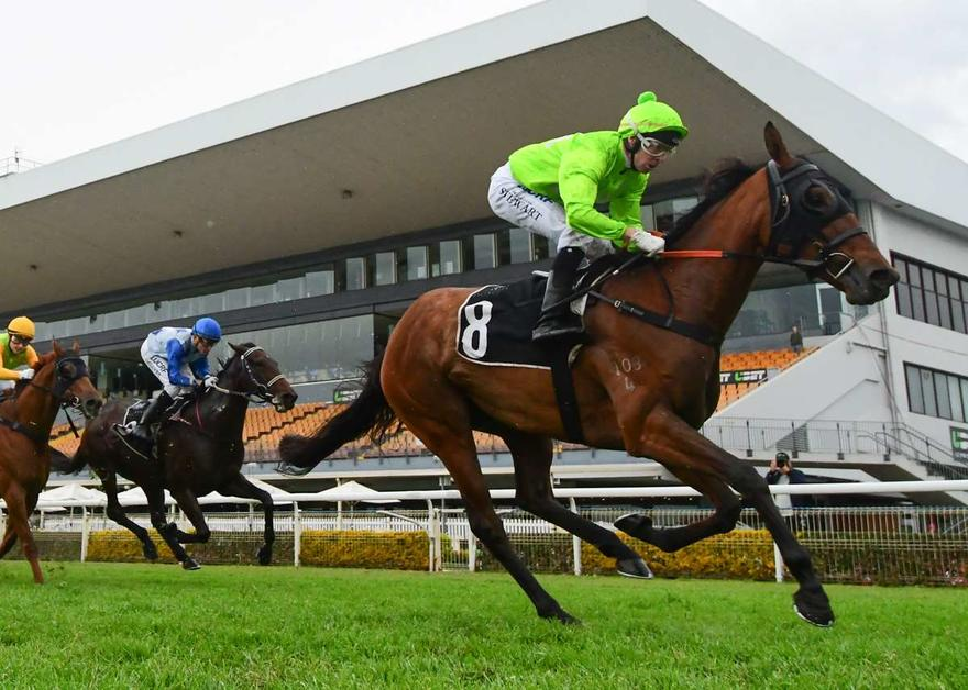 STRONG TEAM TO TACKLE GRAFTON FEATURES