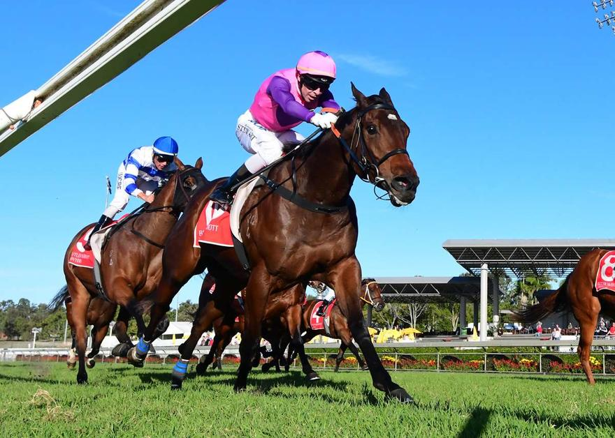 GOLD COAST PREVIEW - JULY 18