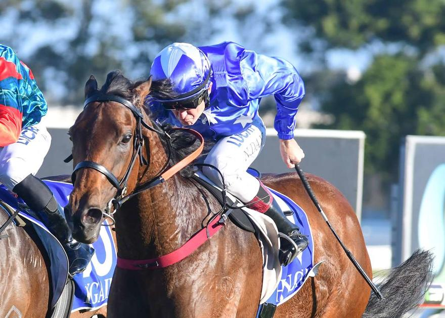 SKY LAKE WINS ON DEBUT IN QLD