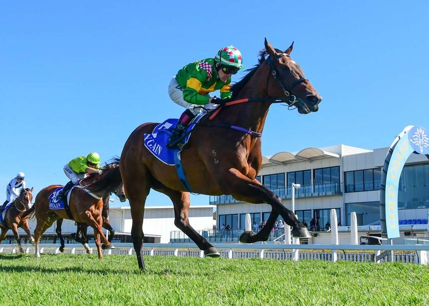 SMARTYPY KEEPS QLD RECORD IN TACT