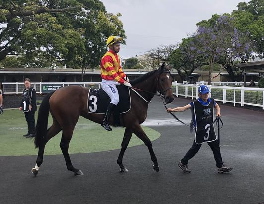 BUCKETS OF PRIDE TO STAKE CLAIM FOR JEWEL