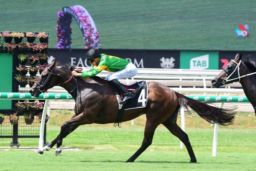SNOOPY CHASING BACK-TO-BACK WINS AT DOOMBEN