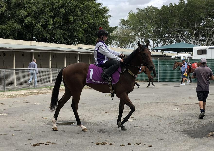 2YOS TO STEP OUT AT TRANSFERRED DOOMBEN MEETING