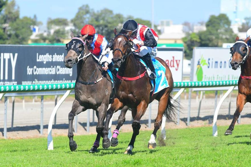 STAMPE SCORES SECOND CAREER WIN AT GOLD COAST