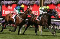 Shamoline Warrior Races Into Derby Favouritism