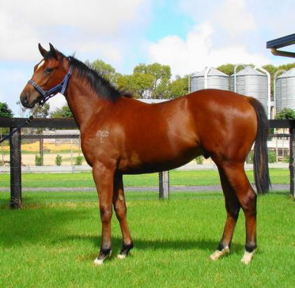 Oratorio Adds Group 2 Winner