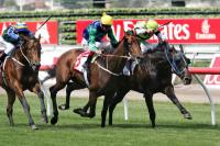 Warrior Seeks Easter Cup Win