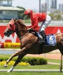Snitzel Destroys Them In The Sires'