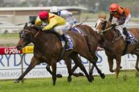 CHURCHILL DOWNS FILLY WINS AT ROSEHILL