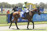 Pakari Toa Impressive First Start Winner
