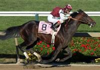 BERNARDINI BEST SINCE 1973