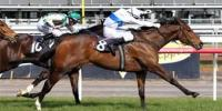 ZABEEL MARE DAZZLES AT AUSTRALIAN DEBUT IN LET'S ELOPE STAKES