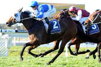 Oaks Aim for Dehere Filly