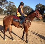 Delbridge Racing Update 8 May 2013