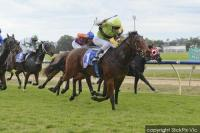 Pakari Toa back to best at Wodonga