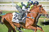 Parallel Lines At Cranbourne Trials