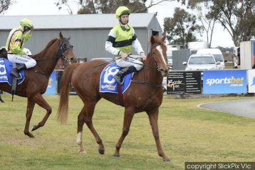 Parallel Lines On Spring Trial at Caulfield.