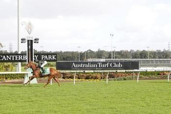 Lane shows who's Boss in Canterbury romp