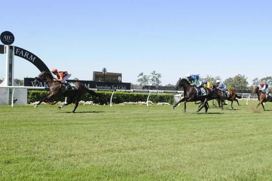 Intimate Moment proves to be to good at Warwick Farm