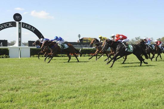 Absolute Empress wins at Warwick Farm!