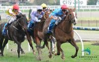Equinova dominant in Moonee Valley win