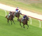 Moshe Pit Gem goes for 2 in a row at Bairnsdale