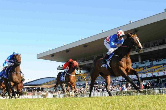 Stable Debutants Ready For Wet Weather