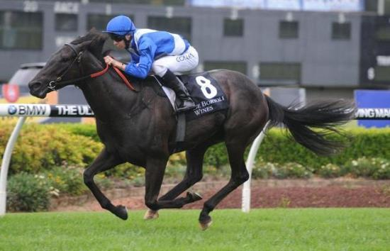 Lightly-raced mare back with a bang