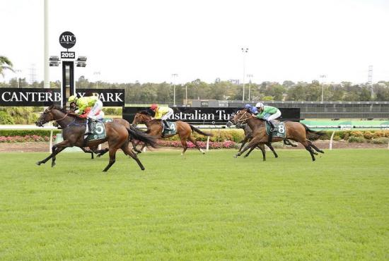 Meteora Miss Soars to Maiden Win