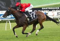 Montaigne set to relish the Rosehill Guineas trip