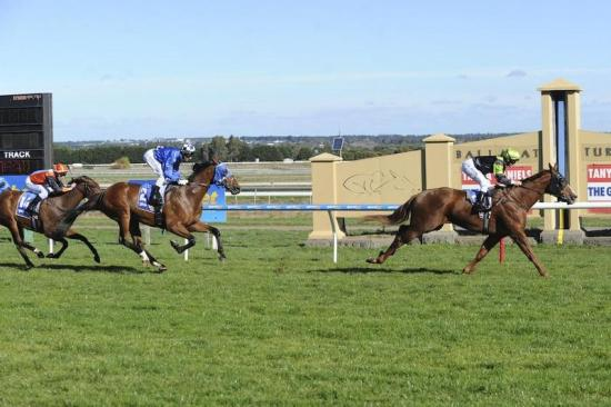 Double for Dan at Ballarat