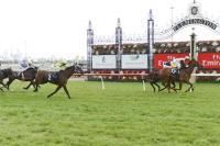 Bushfire Horse Wins at Flemington