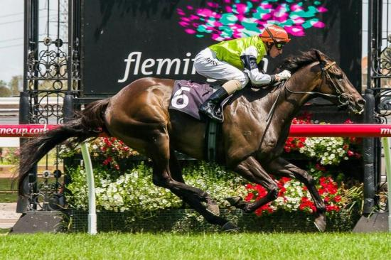 New Years Day Double at Flemington