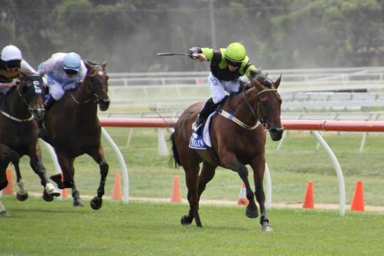 Easy work for Beer Garden at Warrnambool