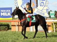 Gottino aimed towards Ballarat Cup, but first comes Flemington