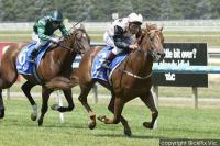 Rock of Glory blows rivals away on home soil