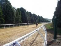 1400m Straight Synthetic Uphill Track.jpg