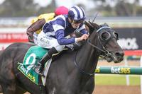 Countess Delta Cracks Her Maiden