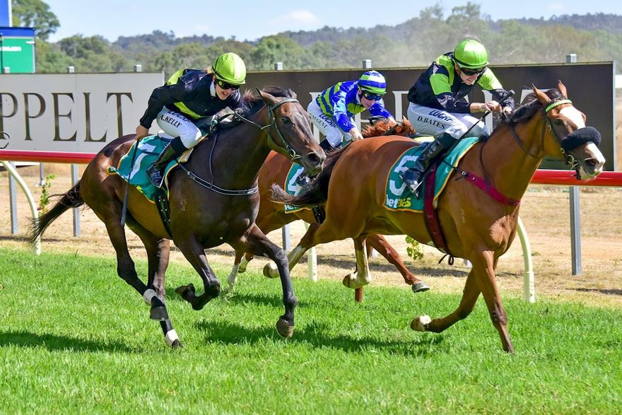 Australia Day Honours For Fine Evader