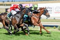 Blunakka Scrapes In At Yarra Valley