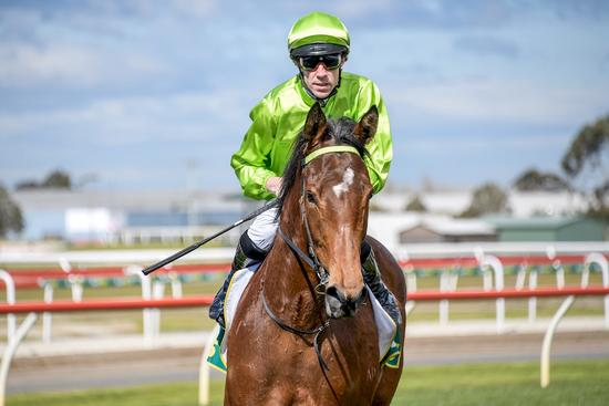 Luckless Filly In Guineas Bid