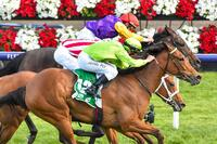 Matriach Stakes Win To Remember