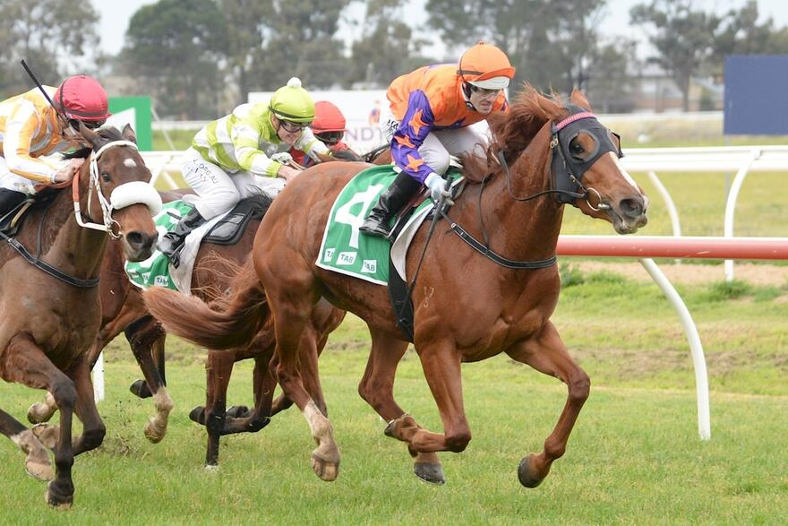 Another Win For Royal Bower